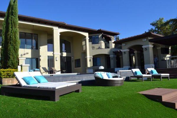 Artificial grass & Ivy Walls