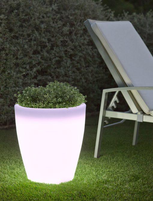 violeta planter